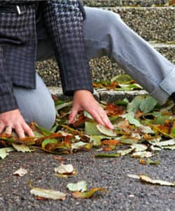 person falling on leaves